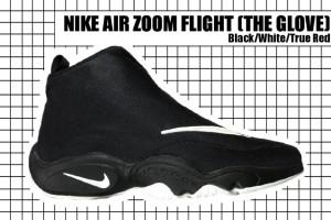 97-98 Air Zoom Flight (The Glove)